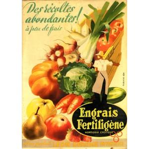 ENGRAIS FERTILIGÈNE - Des recoltes abondantes !!
